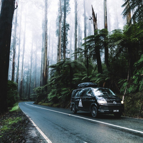 Experience the Yarra Valley & Dandenong Ranges for Two