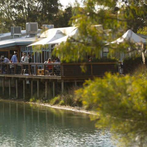 The Ultimate Maggie Beer's Farm Shop Experience