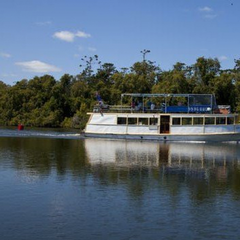 Tweed River and Rainforest Lunch Cruise for Two